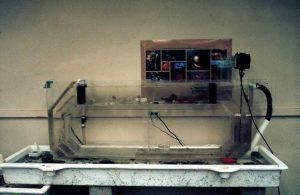 Flow Tank