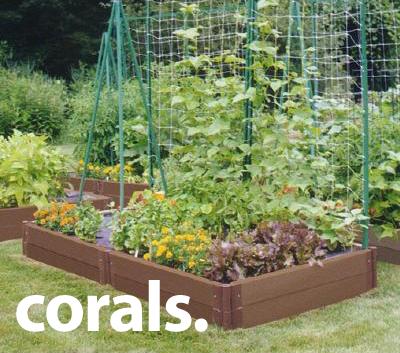 wpid-raised-veg-garden-2011-05-6-21-16.png