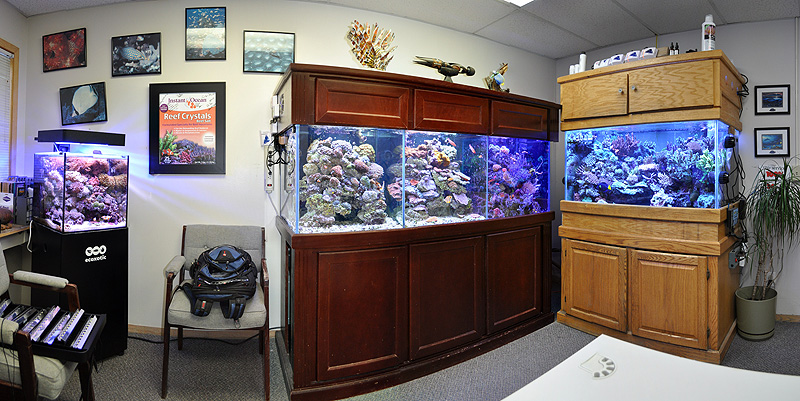 The final image, a tighter shot of Kevin Kohen's office aquariums.