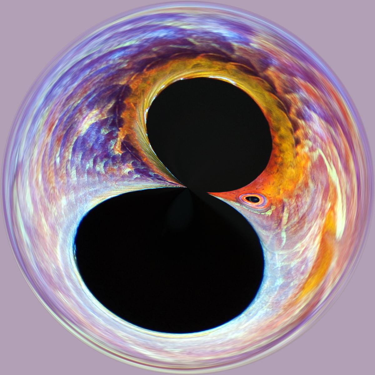 DSC_1833-circle