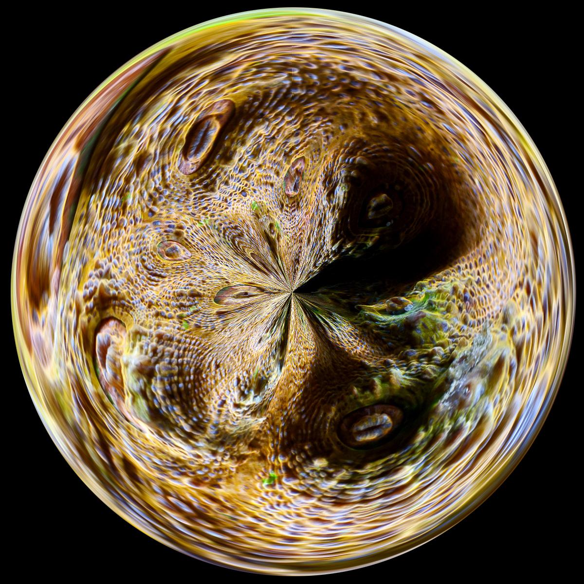 DSC_2087-circle