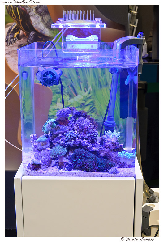 Interzoo 2012 Sicce And Lgmaquari Booths Reefs Com