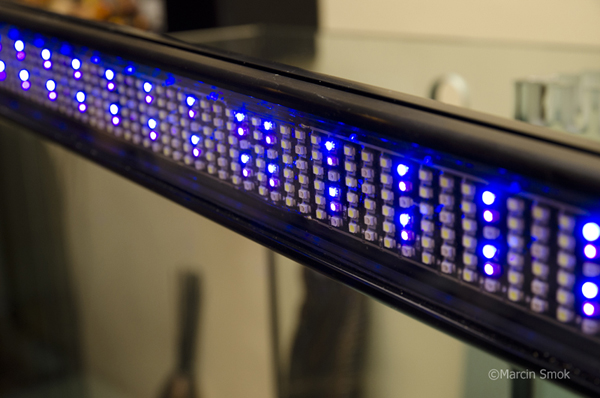 Product review hagen fluval sea led light reefs the aquarium led market is getting saturated with new light fixtures coming out month after month featuring the latest diode chips computer control aloadofball Image collections