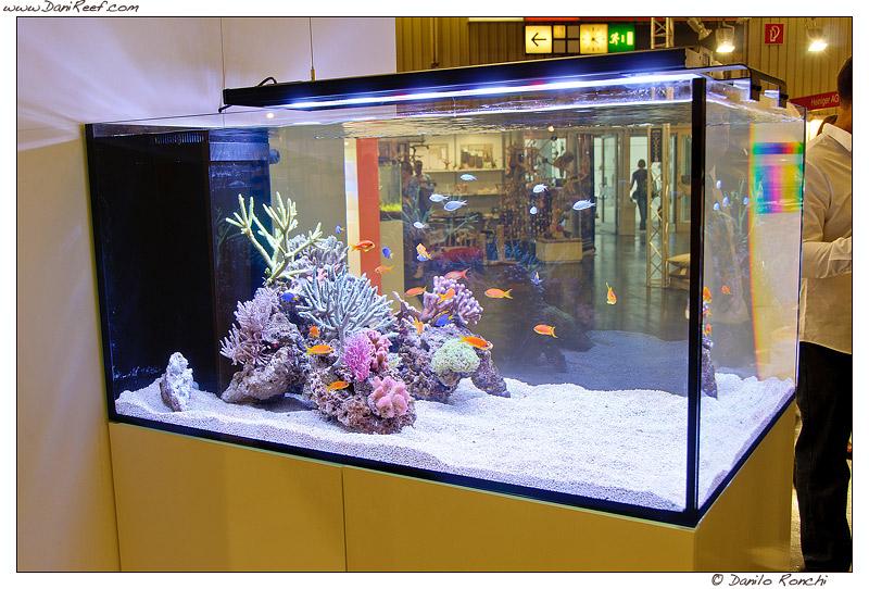 Vertex Aquarium Stand 1000 Aquarium Ideas