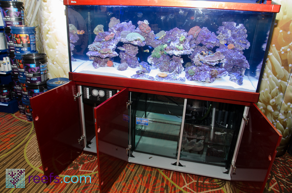 macna coverage red sea new line of large aquariums. Black Bedroom Furniture Sets. Home Design Ideas