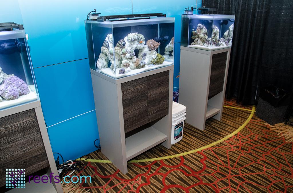 Fluval Reef Aquarium