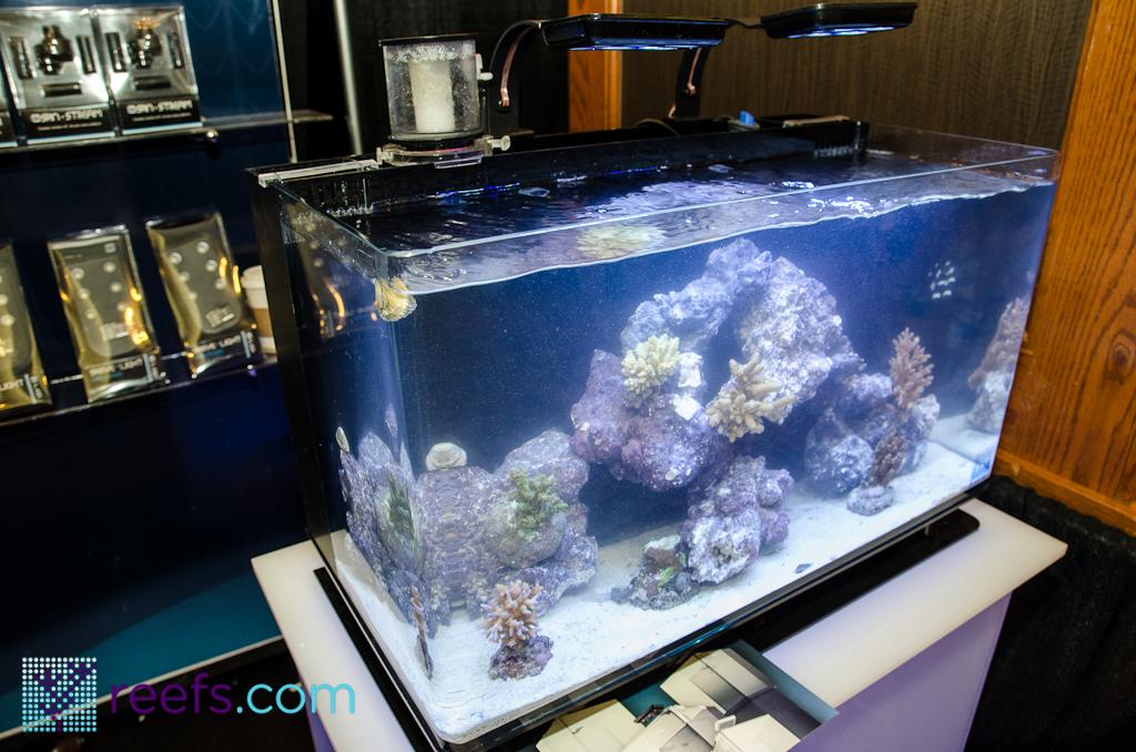 Macna Coverage Innovative Marine Nano Tanks Reefs Com