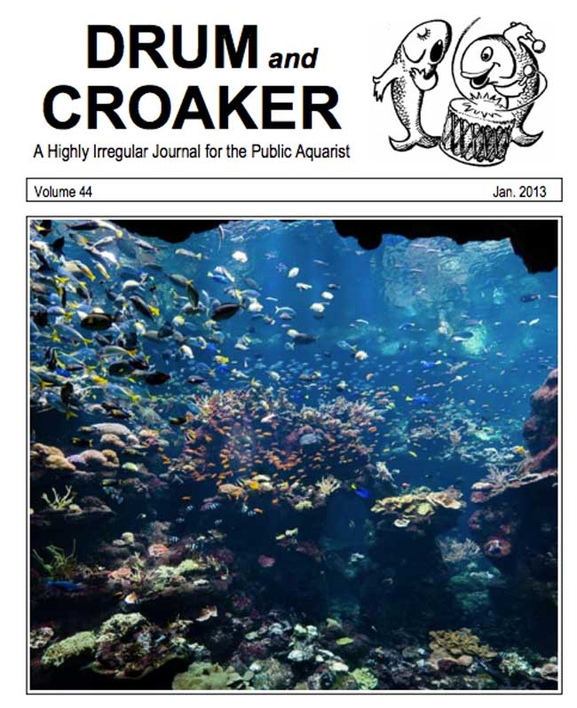 drum-and-croaker