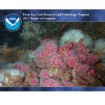 Deep Sea Coral Research Report