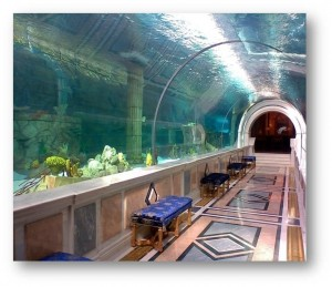 MEGA Home Aquariums in the Middle East
