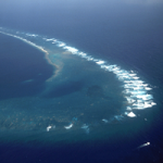 Kingman Reef: What a Reef without Humans Looks Like