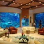 Mega Home Aquariums in the Middle East Part 1