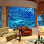 Mega Home Aquariums of the Middle East – Part 2