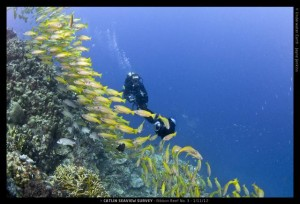 Catlin Seaview Survey. 2012.11._L_RR3_CB