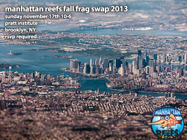 manhattan-reefs-fall-frag-swap