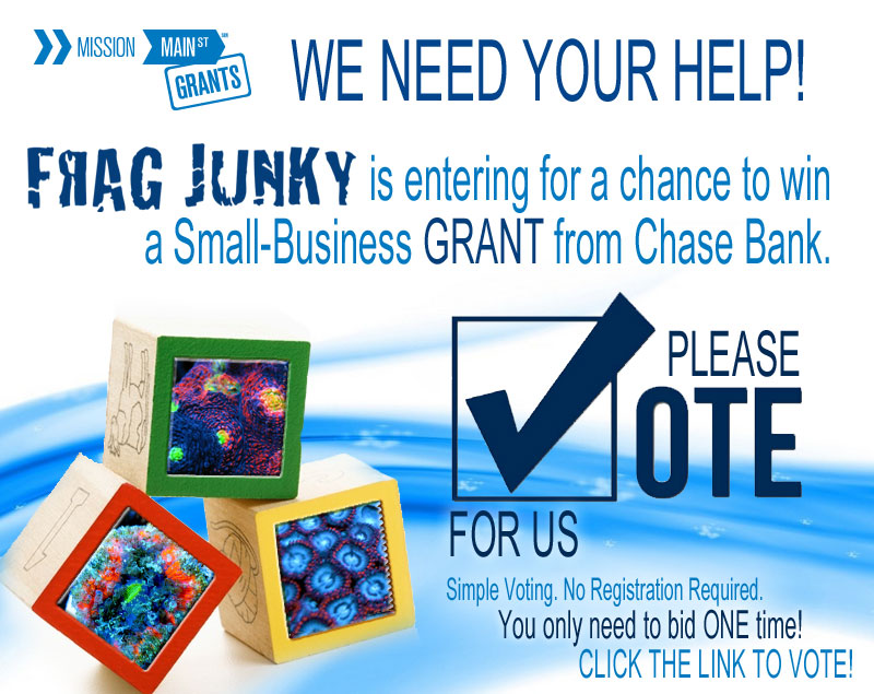 Chase-Vote-for-Us-Banner