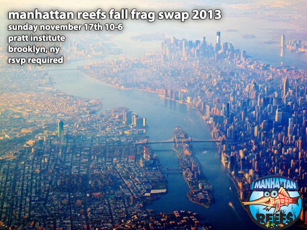 fall-2013-frag-swap-manhattan-reefs