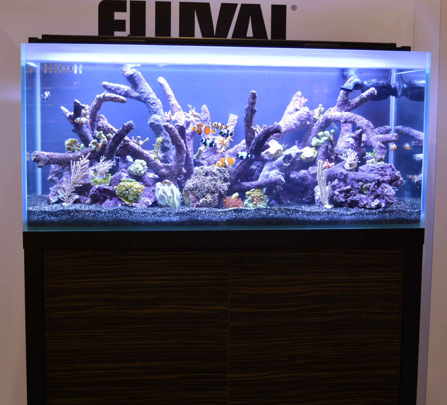 asta lumini aquarium plant lights mount light kit shop lighting