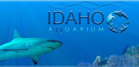 1386089718-idaho_aquarium
