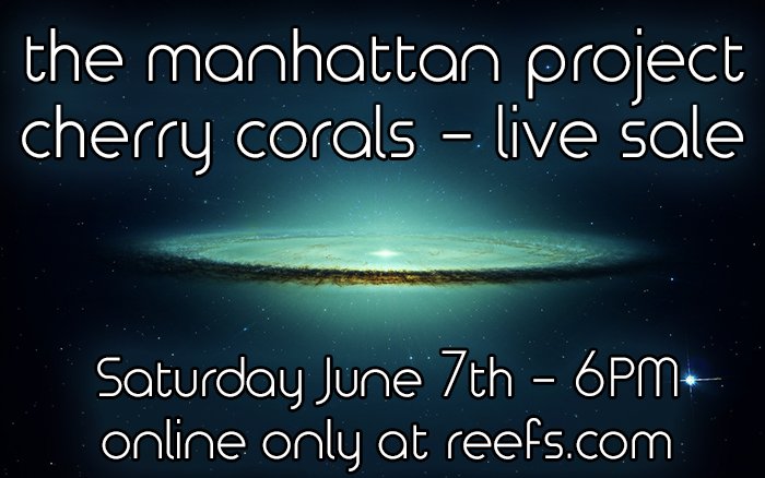 cherry-corals-live-sale