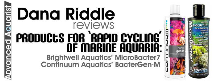 rapidcyclingreview2.jpg