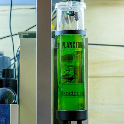 New Planctondose by Planctontech - stazione dosatrice zooplancton