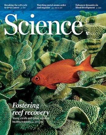 Science Cover Story