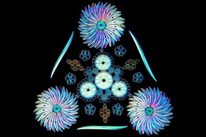 diatom1