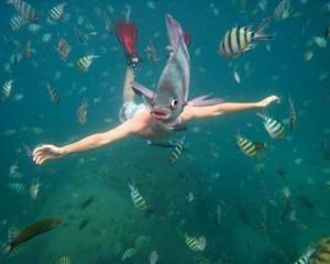 fish-photobomb-6