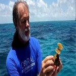 Coral Restoration Foundation Pioneer Ken Nedimyer Named 'Sea Hero Of The Year'
