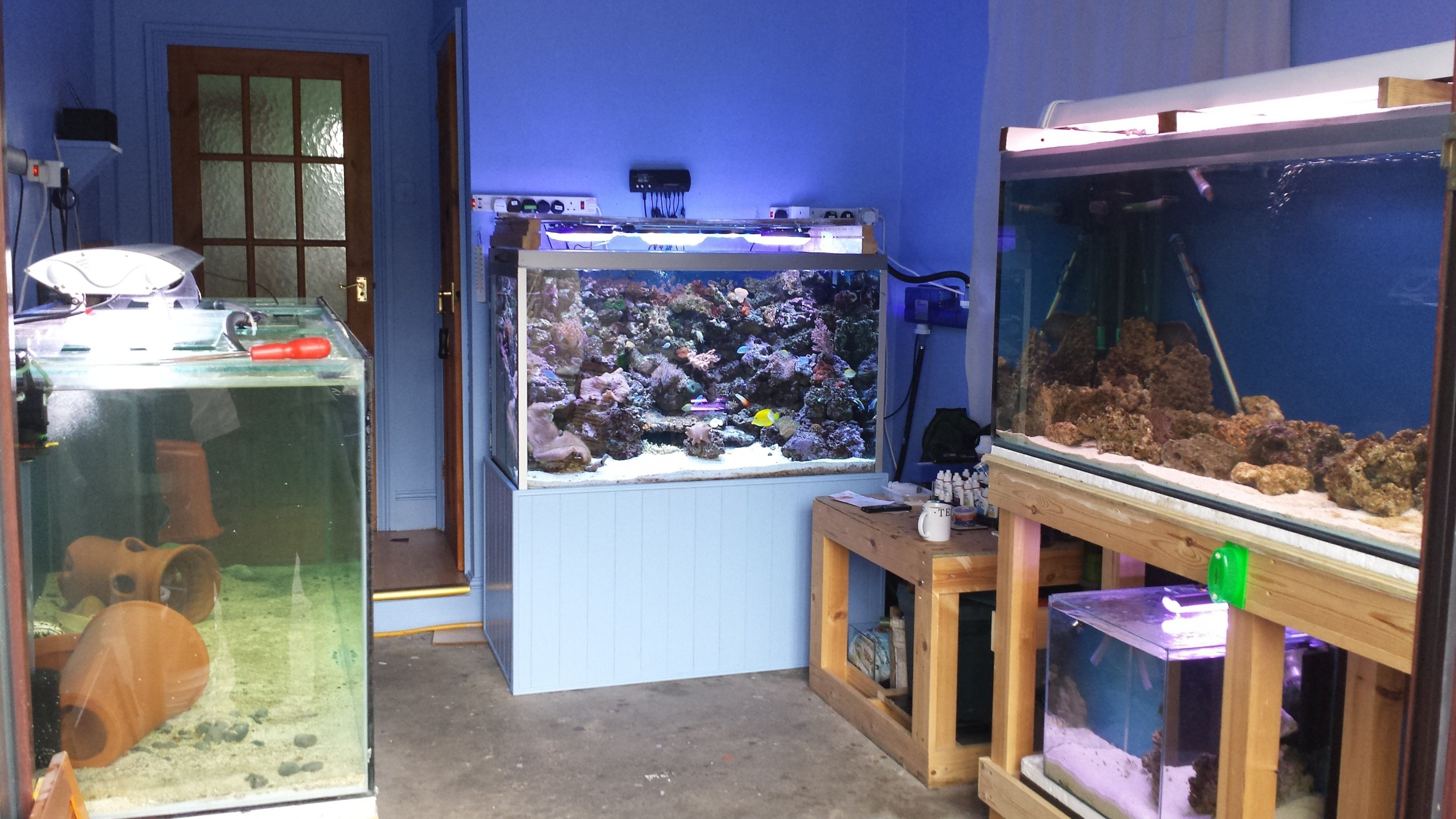 20 Amp Outlet >> Designing a fish room... | Reefs.com