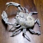 Paddle-Crab-700x710