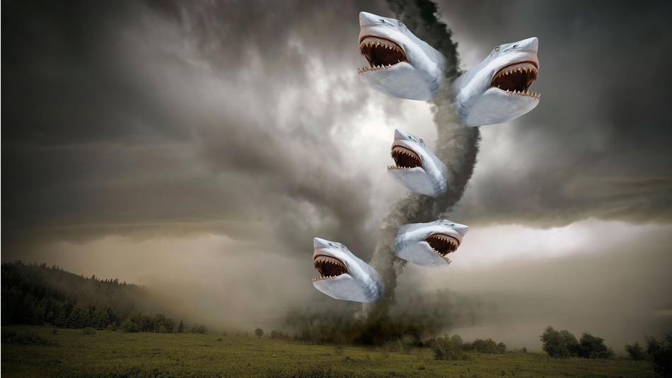 sharknado-attack