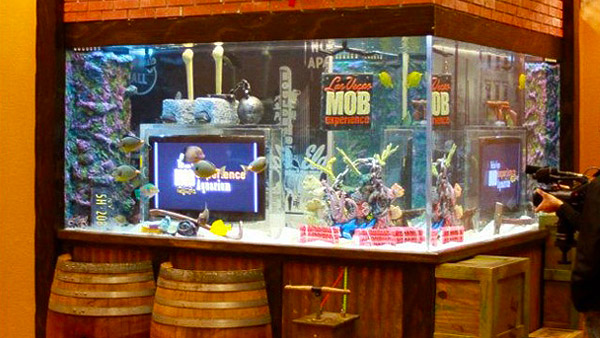 Opiate for the masses animal planet 39 s tanked for Atm fish tank