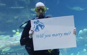 2479D11000000578-2900397-For_this_once_in_a_lifetime_proposal_a_diver_will_hold_up_a_pers-m-84_1420648797020