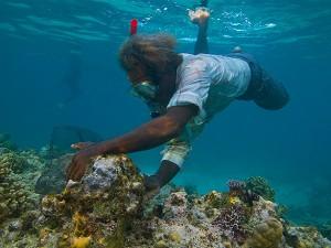 Aquarium-Fisher-Solomons