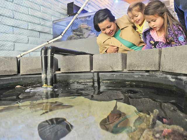 0130_news_aquarium_KL_0001