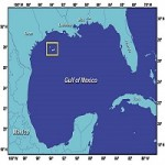Plans To Expand Gulf Of Mexico Reef Sanctuary