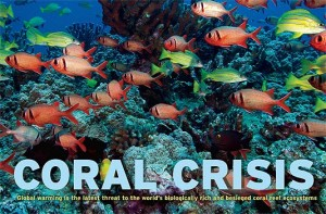 coral-reefs-2011
