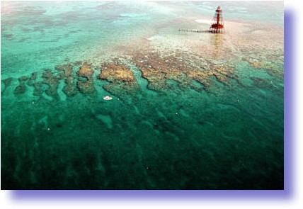 florida-keys-reefs-cropped