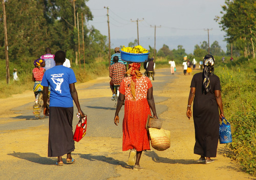 the road leading out to our field site in Kenya
