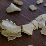 fragment samples in Kenya