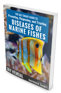 Disease-Marine_Fishes_cover