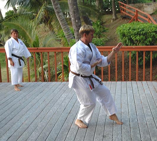 Rob-karate