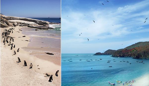 Left: Simonstown, South Africa (near Cape Town); Right: Manzanillo, Venezuela.
