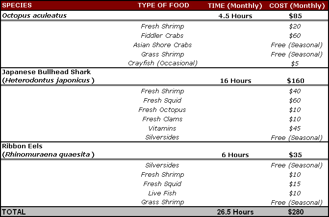 """The time and money exerted to keep advanced aquarist species is an investment many hobbyist are not prepared for or aware of. This table highlights some of the species discussed in this article and the average monthly cost and time spent practicing the PROPER care. Items noted """"seasonal"""" are live foods I collect locally. If shore access and/or time is limited or non-existent, the monthly cost for keeping these species can be significantly higher."""