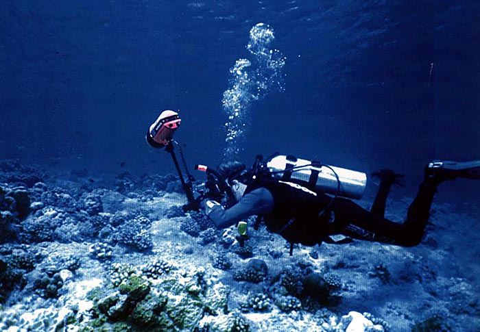 In 1997, first dive in the south-western Pacific, Palau. Photo by M. Awai.