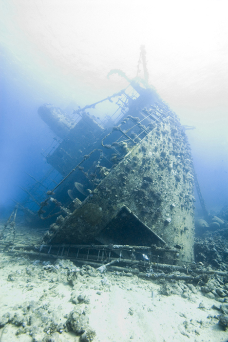 Sunk in 1983 the Giannis D is still noticeably a ship, but along her flanks the reef building corals have taken a firm hold and wherever corals grow fish and other life will congregate.