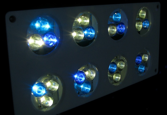 The tricolor pucks in this Aqua Illumination LED shows the difference between blue and royal blue LEDs.