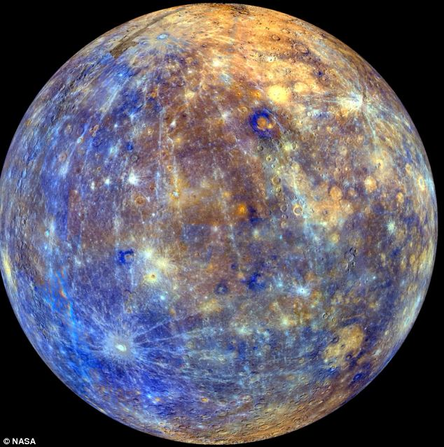 The end of the thomas brown mercury disclosure for Where does mercury in fish come from